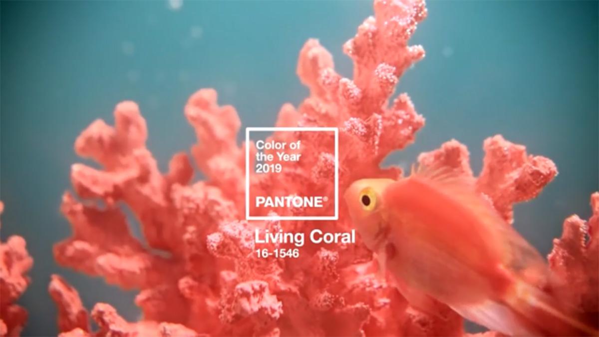 PANTONE 2019年度代表色出爐!用「活珊瑚橘」佈置居家 讓空間充滿活力!